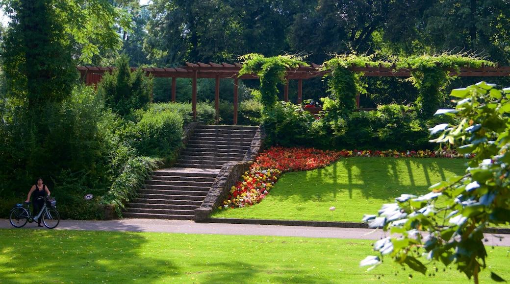 Luxembourg qui includes fleurs et parc