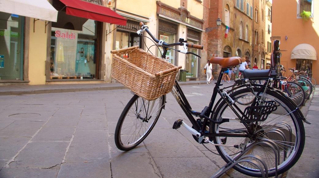 Lucca Provinz mit einem Fahrradfahren