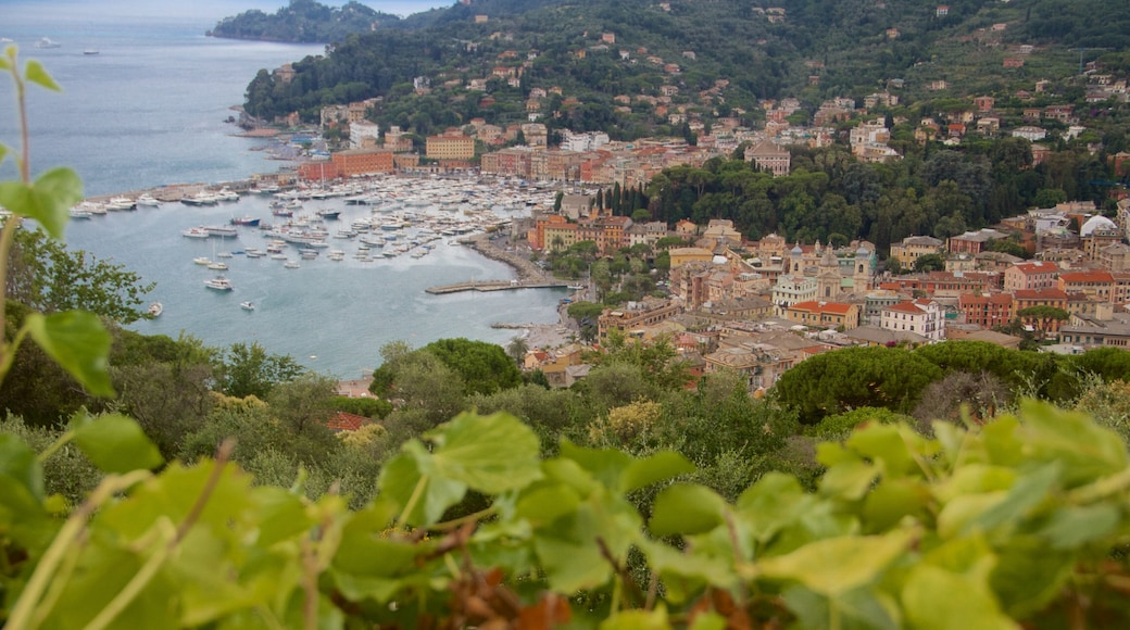Portofino welches beinhaltet allgemeine Küstenansicht, Stadt und Küstenort