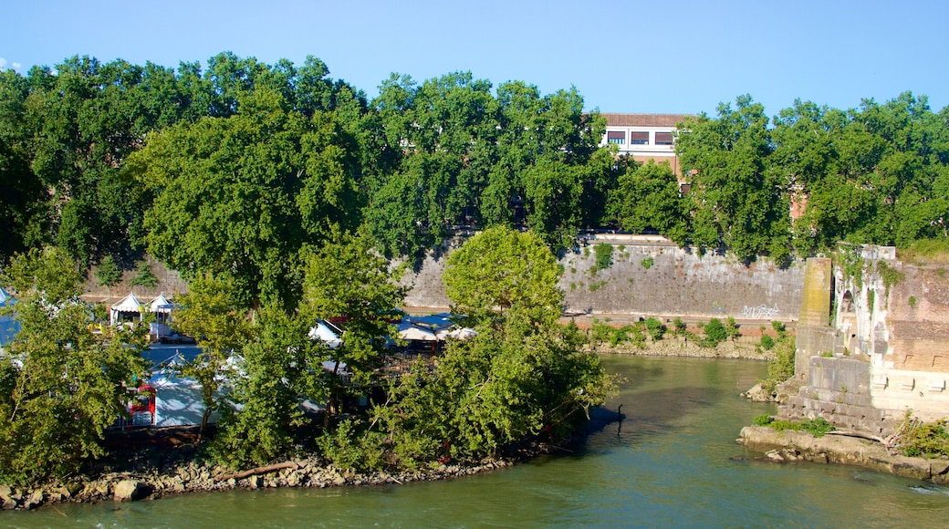 Tiber Island which includes a lake or waterhole