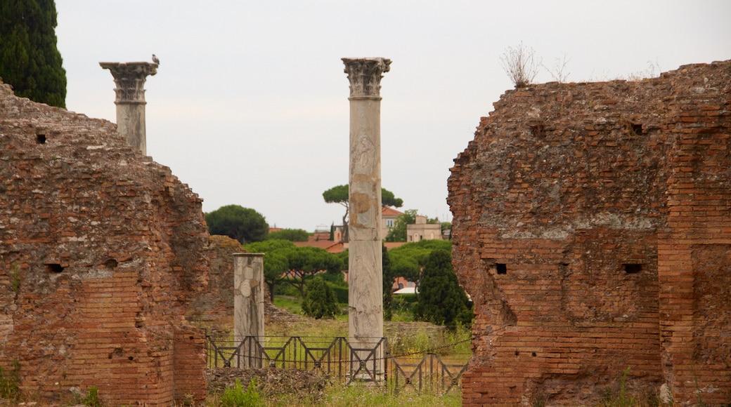 Palatinus-kukkula johon kuuluu rakennuksen rauniot