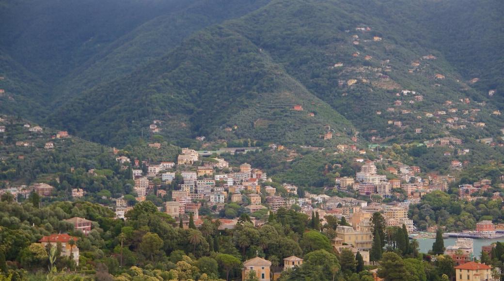 Rapallo som inkluderar en kuststad och stillsam natur