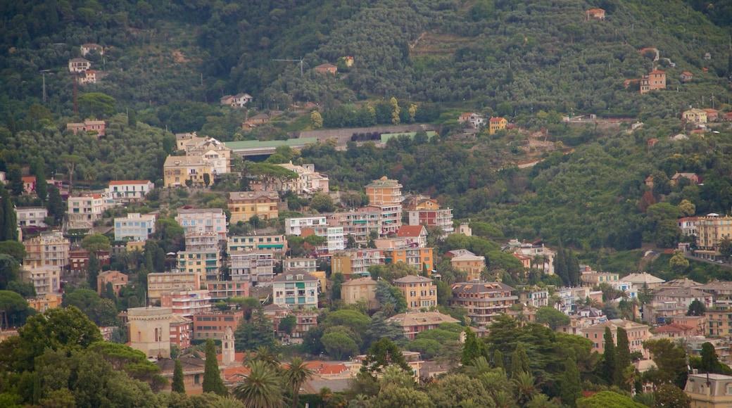 Rapallo som inkluderar stillsam natur