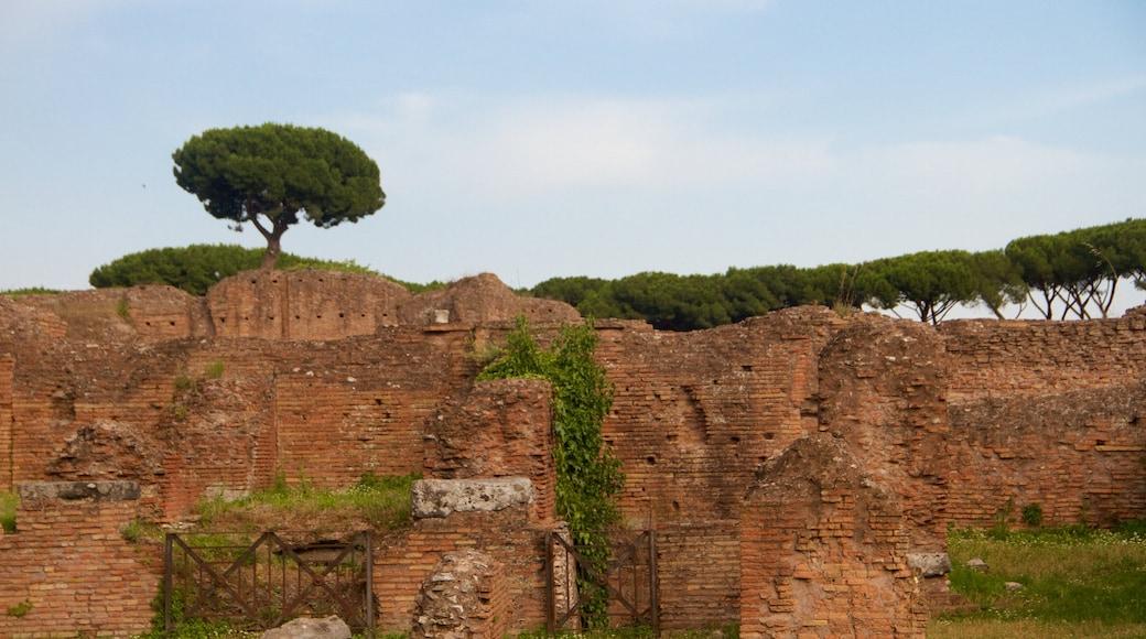 Roman Forum featuring a ruin