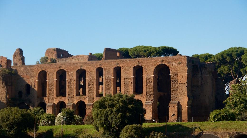 Circo Massimo fasiliteter samt historisk arkitektur, ruiner og kulturarv