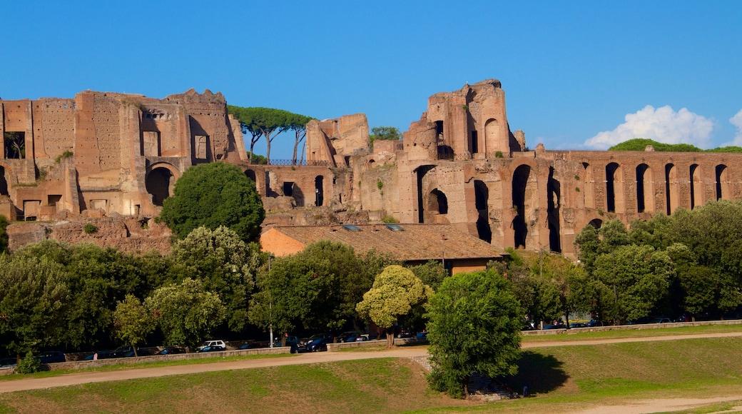 Circo Massimo som inkluderer ruiner, historisk arkitektur og kulturarv