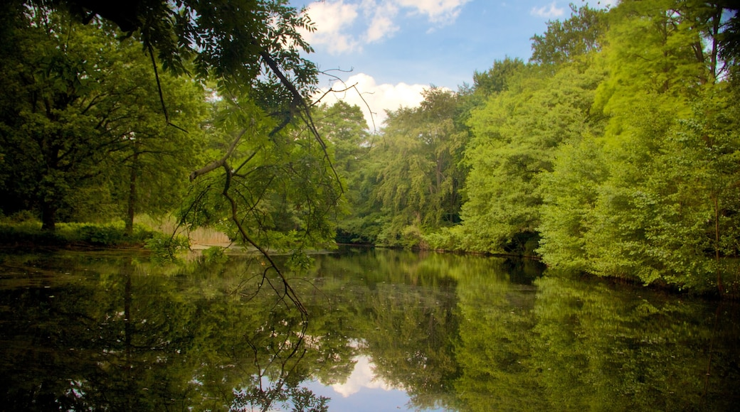 Tiergarten which includes a lake or waterhole and forests