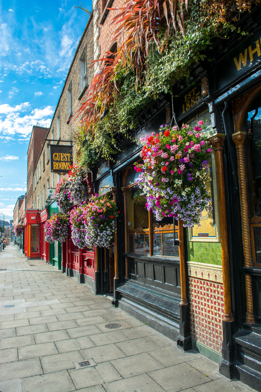 Pub in Dublin