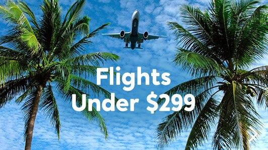 Flights Under $299