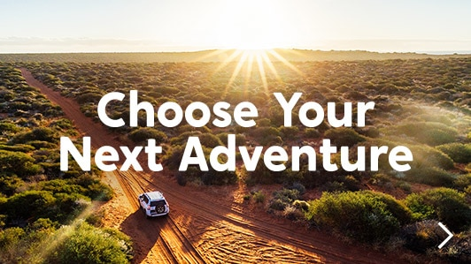 Choose Your Next Adventure