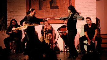 Spectacle de flamenco au Tablao de Carmen avec option dîner