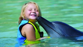 Dolphin Water Experience & Aquaventure Waterpark Admission