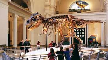 The Field Museum with optional Jurassic World: The Exhibition