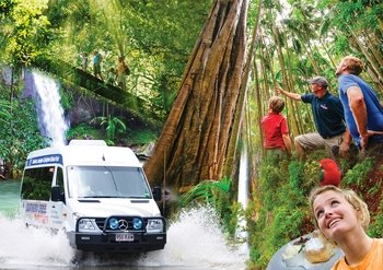 Mt Tamborine & Lamington Rainforest 4WD Full Day Tour