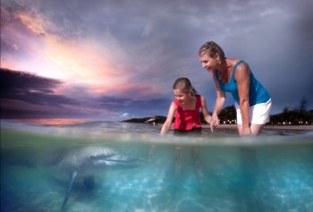 Tangalooma Island Resort Premium Day Trip with Dolphin Feeding
