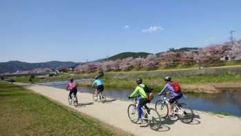 Small-Group Kyoto Cycling Tour