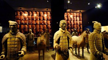 Ancient City Wall & Big Wild Goose Pagoda Tour