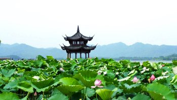 Private Hangzhou: Heaven on Earth Day Tour from Shanghai
