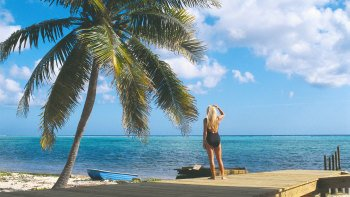 Best of Barbados Land & Sea Tour