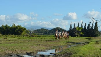 Countryside Horseback Riding