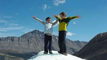 Brewster: Glacier Adventure & Skywalk Tour