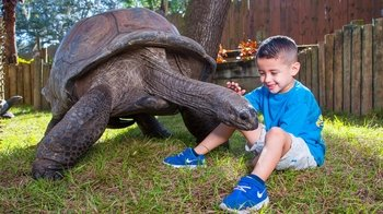 ZooTampa at Lowry Park Admission