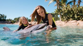 Discovery Cove®-resortpaket