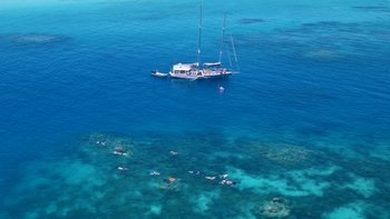 Small-group Sailing Adventure to Green Island & Reef Snorkel