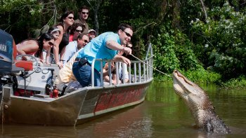Daily Honey Island Swamp Tours by Cajun Encounters