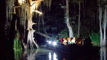 Honey Island Swamp Night Tour