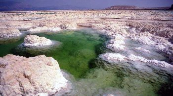 Masada & Dead Sea Full-Day Tour from Jerusalem