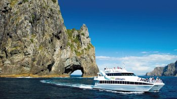 Bay of Islands Day Tour with Cruise