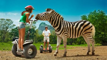 Casela Nature Park Segway Tour