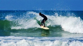 Surfing Full-Day Experience with Lunch