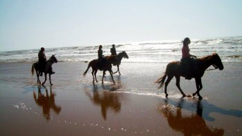Horse Riding Adventure to the River Souss