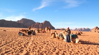 Wadi Rum Desert Private Full-Day Tour