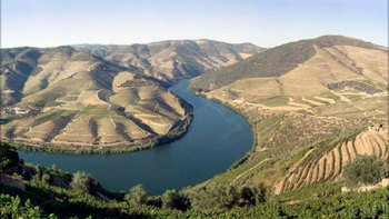 Douro Valley Full-Day Tour with Wine Tasting