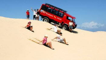 Port Stephens Day Tour with Reptile Park, Dolphins & Sandboarding