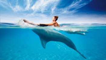 Interactive Dolphin Programs & Wet'n Wild Water Admission