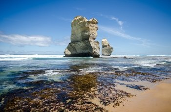 Small Group Day Tour to the 12 Apostles and Great Ocean Road