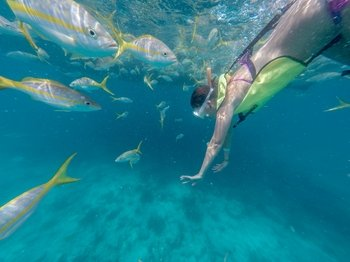 Morning Snorkel & Sail Catamaran Excursion to Florida Reef