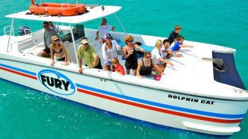 Dolphin Watch & Snorkelling Tour