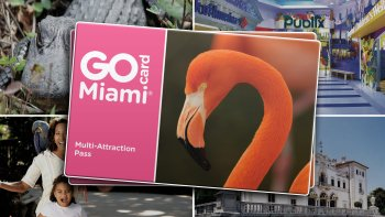 Go Miami Card: 28 Attractions in 1 Card