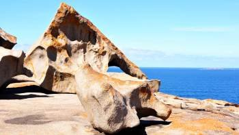 Wildlife & Nature Tour on Kangaroo Island