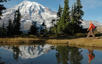 Small Group Mt. Rainier Glaciers, Waterfalls & Wildlife Tour