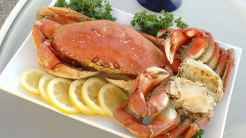 Chuckanut Bay Cracked Crab Dinner Cruise