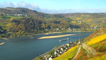City & Rhine Valley Tour with Cruise, Wine Tasting & Dinner