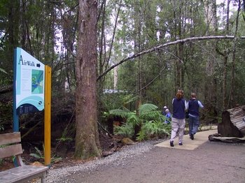 Huon Valley with Tahune Forest Airwalk Tour from Hobart