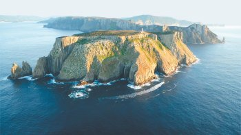 Tasman Peninsula Eco Cruise from Hobart