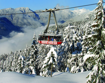 Grouse Mountain Experience